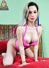 Natalia Castro is a lovely Trans Blonde Bombshell. Pretty face, perfect body rock hard erection and impressive sexual energy are few if her talents sh